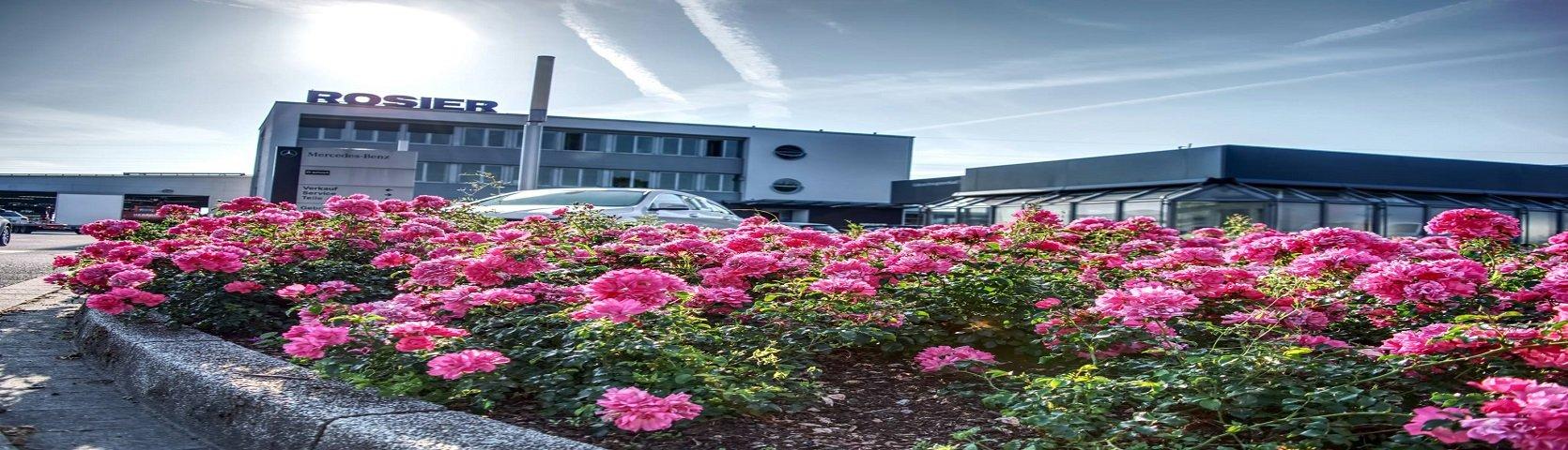 Autohaus Heinrich Rosier GmbH